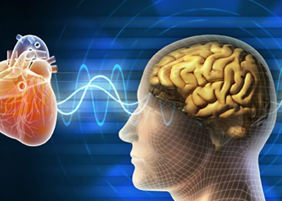 Biofeedback Cardioemotion